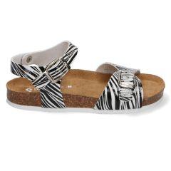 Braqeez Sally Spain - 420004 - Zebra