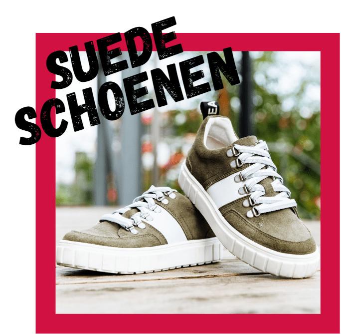 Suede Schoenen